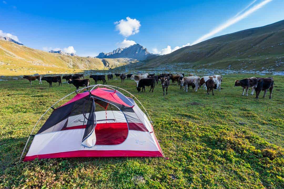 Photos Of Kyrgyzstan Campsite Jyrgalan Trek