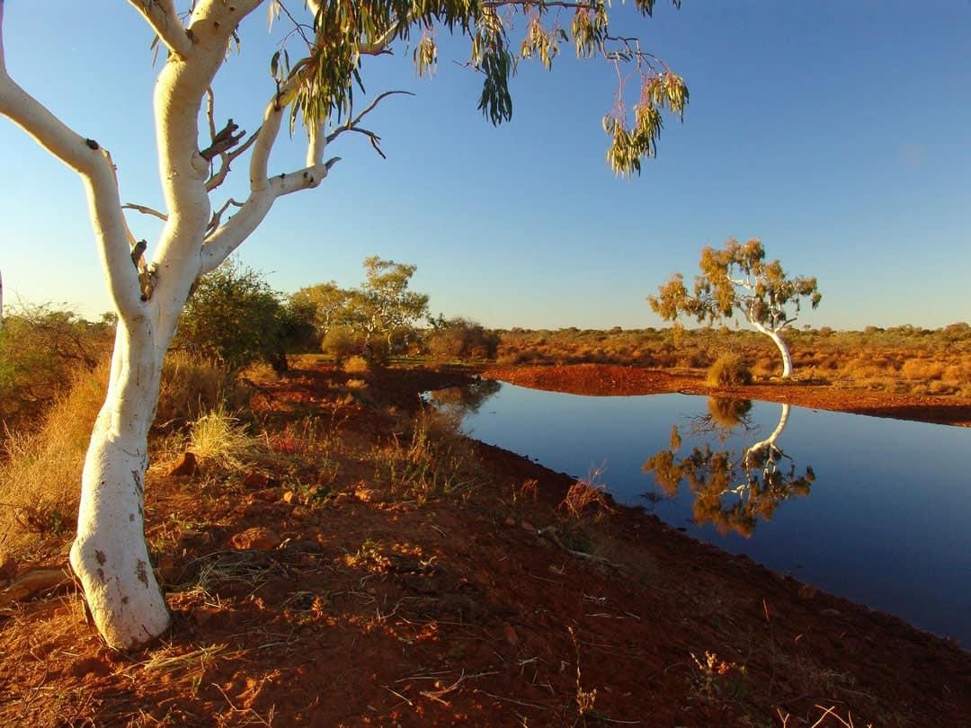 Backpacker Guide Road Tripping Australia