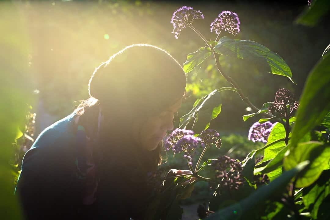 Lesh Smelling Flowers Beste Kamera Für Die Reise