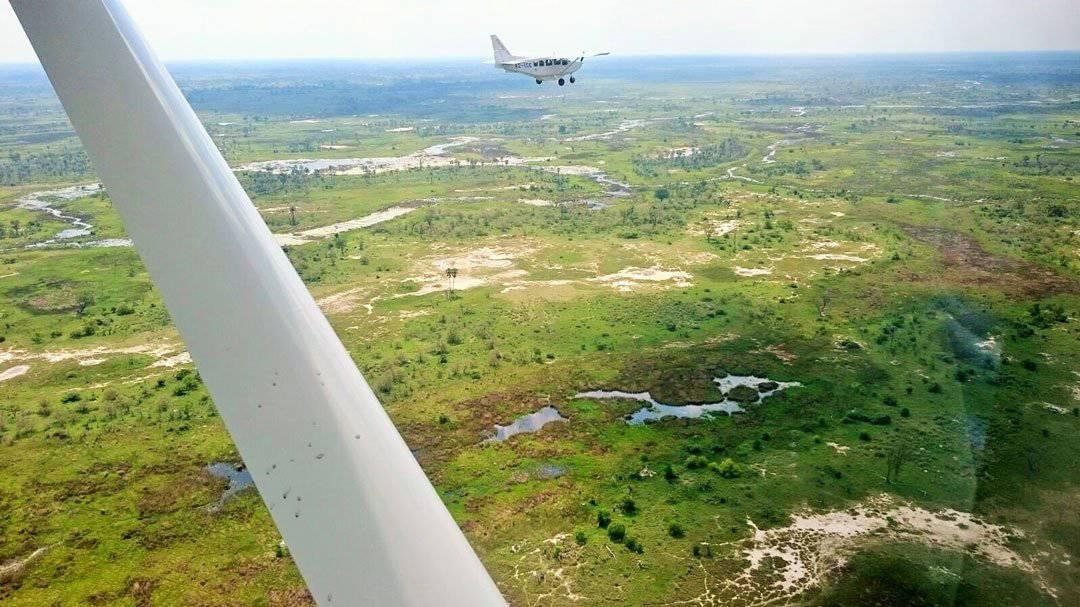 Plane Okavango Delta
