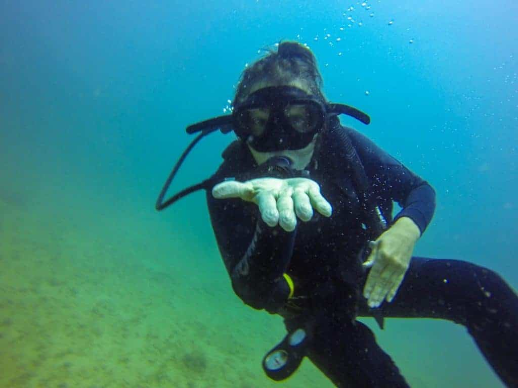 Scuba Diver Make Money Travelling