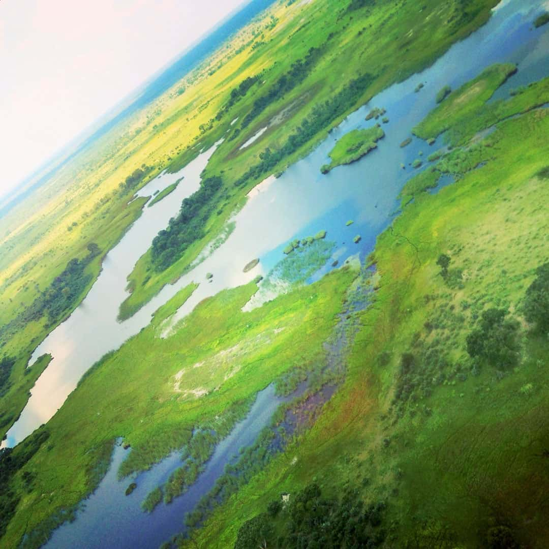 Views Okavango Delta