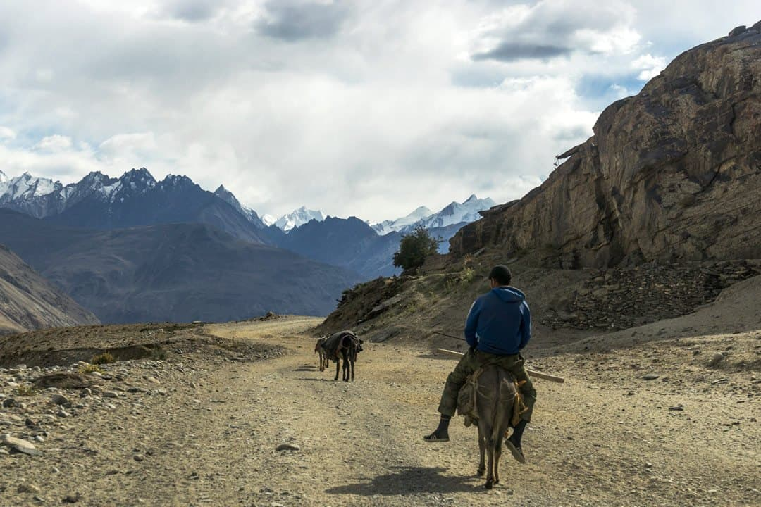 Donkey Pamir Highway Adventure