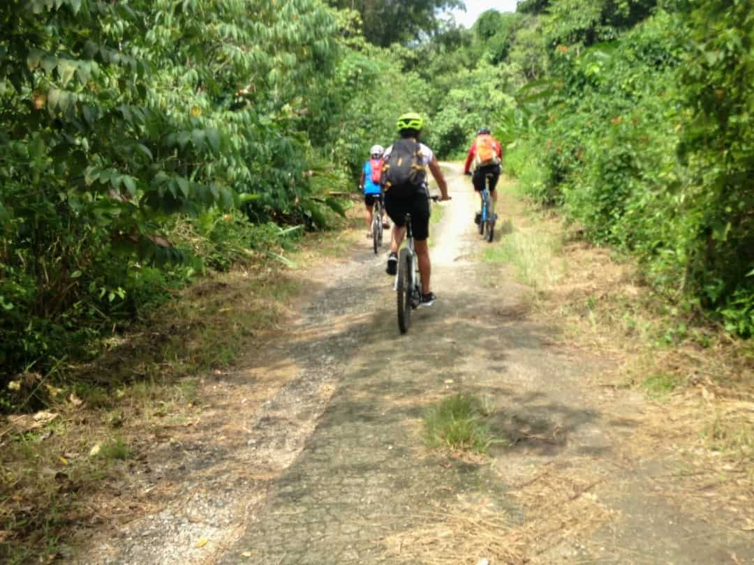 Mountain Bike Trinidad And Tobago